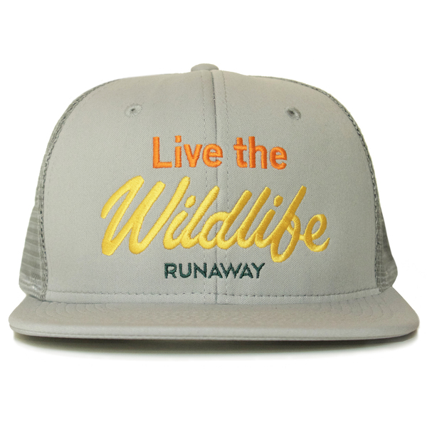 Runaway live the wildlife gray front